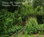 Simone Nieweg: Nature Man Made