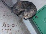 山内道雄/ Michio Yamauchi: バンコ
