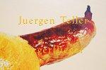 Juergen Teller: Siegerflieger(特価品)