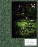 Terri Weifenbach: Des oiseaux