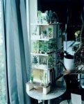 鈴木理策: Garden & House by Ryue Nishizawa. My secret Flowers (私の秘密の花--西沢立衛のガーデン&ハウス)(プリント付き限定版)(サイン本)