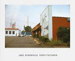 Joel Sternfeld: First Pictures (お取り寄せ)