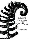 Karl Blossfeldt: Art Forms In The Plant World