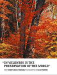 Eliot Porter: In Wildness Is the Preservation of the World(特価品)
