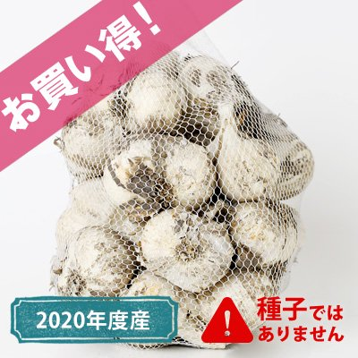 青森県産お買い得にんにく(土付き)