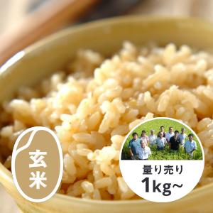 山形 雪若丸 玄米1kg(新品種)