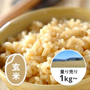北海道 ゆめぴりか 玄米1kg(YES!clean栽培)