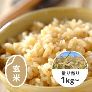 北海道 ななつぼし 玄米1kg(YES!clean栽培)
