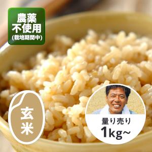 【新米】山形 自然農法のひとめぼれ 玄米1kg(農薬不使用)