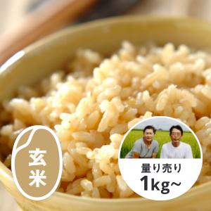 【新米】千葉エコ栽培/千葉 極献上とねのめぐみ 玄米1kg