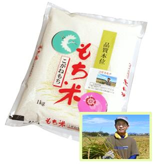 特別栽培米/新潟 コガネモチ(もち米)