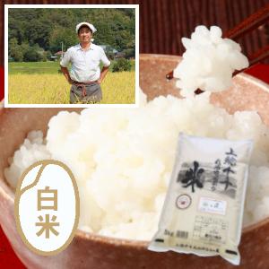 千葉エコ栽培/千葉 上総千年米コシヒカリ