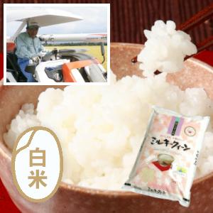 特別栽培米/新潟 ミルキークイーン