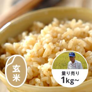秋田 淡雪こまち 玄米1kg ※玄米食にオススメ