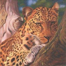 Leopard レオパード 豹 1枚 バラ売り 33cm ペーパーナプキン デコパージュ HOME FASHION