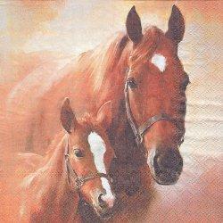 廃盤 HORSE WITH FOAL 水彩画の馬 ブラウン 1枚 バラ売り 33cm ペーパーナプキン デコパージュ Ambiente