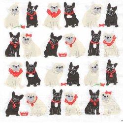 Mops & Mops ブル&ブル 犬 C. Pabst 1枚 バラ売り 33cm ペーパーナプキン デコパージュ ppd