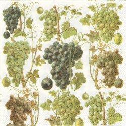 GRAPE HARVEST グレープ・ハーベスト 葡萄の収穫 1枚 バラ売り 33cm ペーパーナプキン デコパージュ Ihr