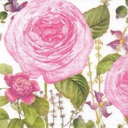 廃盤 Princess Rose プリンセス・ローズ ピンク Color Bakery 1枚 バラ売り 33cm ペーパーナプキン デコパージュ ppd