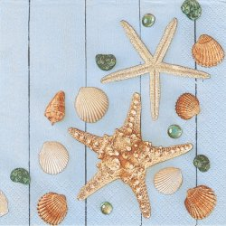 Sea Stars & Shells ビー玉と貝殻 シェル 海 1枚 バラ売り 33cm ペーパーナプキン デコパージュ Daisy