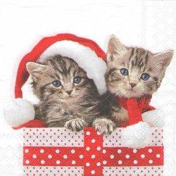 CHRISTMAS KITTEN 写真 サンタ帽子の猫 ねこ クリスマス・キャット 1枚 バラ売り 33cm ペーパーナプキン デコパージュ Ambiente