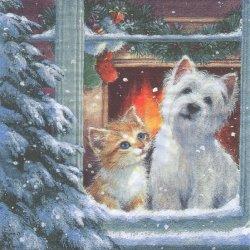 Westie & Kittin looking out of window 雪降る窓辺から 子猫キャット 犬 1枚 バラ売り 33cm ペーパーナプキン デコパージュ ti-flair