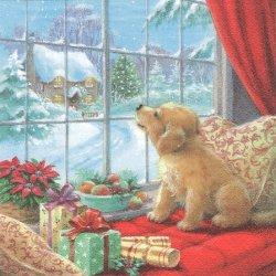 Puppy on Window Seat 窓辺の子犬 クリスマス 1枚 バラ売り 33cm ペーパーナプキン デコパージュ ti-flair