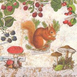 廃番 Squirrel ベリーと子リス きのこ 1枚 バラ売り 33cm ペーパーナプキン 紙ナプキン デコパージュ Nouveau