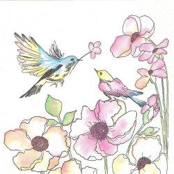 Watercolour Birds & Flowers 淡いトーンのスケッチ画 2羽の小鳥 1枚 バラ売り 33cm ペーパーナプキン 紙ナプキン デコパージュ Daisy