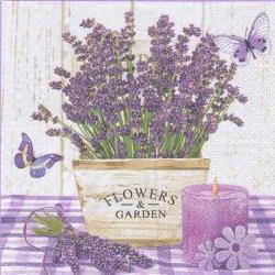 廃盤 Lavender in a Wooden Pot 鉢植えのラベンダー パープル 1枚 バラ売り 33cm ペーパーナプキン 紙ナプキン デコパージュ Daisy