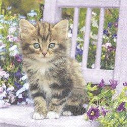 淡い紫の花に囲まれたしましま猫/1枚/33cm/ペーパーナプキン 紙ナプキン/バラ売り/デコパージュ Nouveau