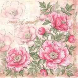 廃番 Scent of Peoney ピンク色の艶やかなシャクヤク コーナー飾り 1枚 バラ売り 33cm ペーパーナプキン 紙ナプキン デコパージュ Maki