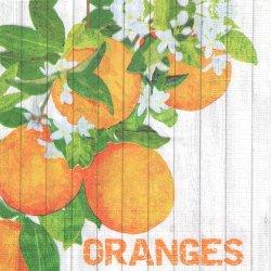 廃盤 Harvest Oranges ハーベストシリーズ オレンジ Two Can Art 1枚 バラ売り 33cm ペーパーナプキン デコパージュ 紙ナプキン ppd