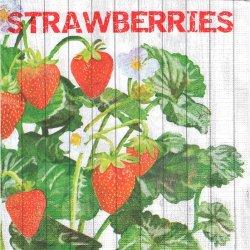 廃盤 Harvest Strawberries ハーベストシリーズ 苺 いちご ストロベリー Two Can Art 1枚 バラ売り 33cm ペーパーナプキン デコパージュ 紙ナプキン ppd