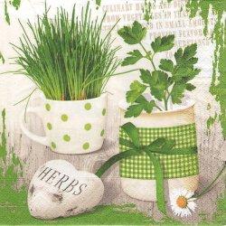 Herbary ハーバリー ハーブポット1枚 バラ売り 33cm ペーパーナプキン デコパージュ 紙ナプキン Paper+Design
