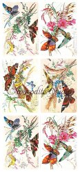 草花と蝶 バタフライ チョウチョのステッカー 1シート ヴィクトリアン シール ラベル ビクトリアン Victorian ラッピング