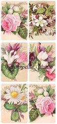 お花のカードのステッカー ソフトオレンジ 1シート ヴィクトリアン シール ラベル ビクトリアン Victorian ラッピング