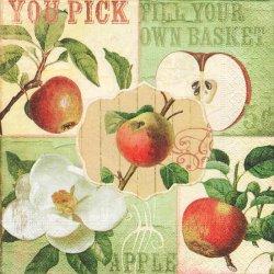 ペーパーナプキン 林檎 リンゴ You picks ヴィンテージテイスト 1枚 33cm デコパージュ用 バラ売り 紙ナプキン paper+design