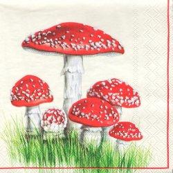 ペーパーナプキン 群生する紅い傘のきのこ 33cm 1枚 デコパージュ用 バラ売り 紙ナプキン ambiente