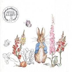 ピーターラビット 塗り絵 白 キャラクター 1枚 33cm バラ売り ペーパーナプキン peter rabbit