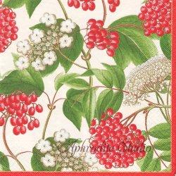 廃盤 BERRY CHINTZ 紅い実、白い花 アイボリー 王立園芸協会 1枚 ばら売り 33cm ペーパーナプキン デコパージュ用 Caspari カスパリ