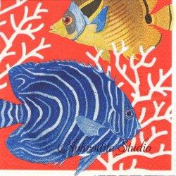 廃盤 CORAL REAF 珊瑚礁 オレンジ Chatsworth House 1枚 ばら売り 33cm ペーパーナプキン デコパージュ用 Caspari カスパリ