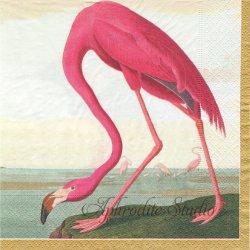 Audubon Birds ピンクとブルーのフラミンゴ Chatsworth House 1枚 ばら売り 33cm ペーパーナプキン デコパージュ用 Caspari カスパリ