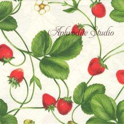 廃盤 STRAWBERRY VINE 苺のつる ストロベリー Cecillia Juliano 1枚 1枚 ばら売り 33cm ペーパーナプキン Caspari カスパリ