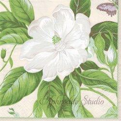 GOLDEN IMAGES 白いハナミズキ 花水木 クリーム Colonial Williamsburg 1枚 ばら売り 33cm ペーパーナプキン Caspari カスパリ