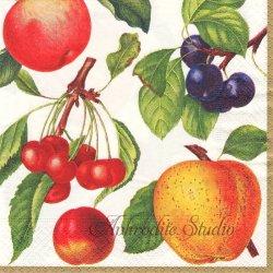 BOTANICAL CHINTZ フルーツ 果物 アイボリー ニューヨーク植物園 1枚 ばら売り 33cm ペーパーナプキン Caspari カスパリ