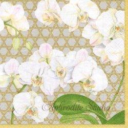 WINTER WHITES 白い胡蝶蘭 シルバー Karen Kluglein 1枚 ばら売り 33cm ペーパーナプキン Caspari カスパリ