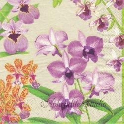 廃盤 ORCHID SHOW 紫やオレンジのオーキッド ニューヨーク植物園 1枚 ばら売り 33cm ペーパーナプキン デコパージュ用 Caspari カスパリ