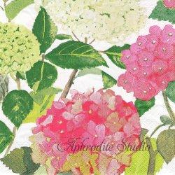 廃盤 ENDLESS SUMMER ピンクの紫陽花 Catharine Weisz 1枚 ばら売り 33cm ペーパーナプキン デコパージュ用 Caspari カスパリ