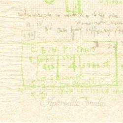25cm 井上陽子 グラフィティB・無漂白 倉敷意匠計画室 1枚 バラ売り ペーパーナプキン デコパージュ用  classiky